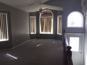 Bi level 3 bedrooms neat and clean newly renovated in millwoods