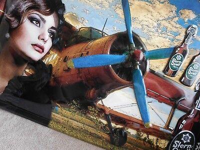 Flugzeugteil Messerschmitt Blechschild 40x30 cm Flugzeug Bier Frauen