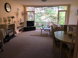 Single room for female large bright Hawthorn apartment (photos coming) Hawthorn Boroondara Area Preview