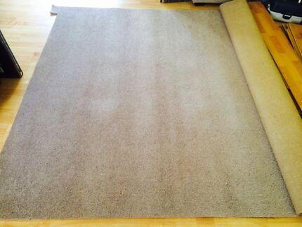 Beige carpet new 212 x 290 cm Duncraig Joondalup Area Preview