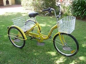 Adult Trike Bike Nairne Mount Barker Area Preview