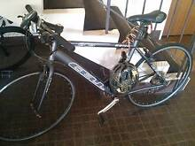 Cell Road Bike Kingsford Eastern Suburbs Preview