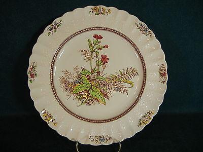 Copeland Spode Rosalie Dinner Plate(s)