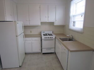 LARGE, RENOVATED, HEATED 2BR ON TERREBONNE IN NDG (dishwasher)