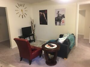 Beautiful fully furnished basement in Airdrie