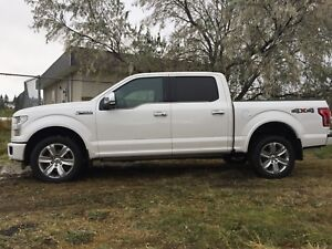 2015 Ford F-150 PLATINUM 4X4, LEATHER, S/ROOF, NAV, PWR BOARDS