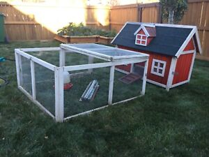 Chicken coop with feed and shavings