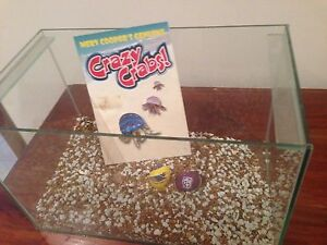 Fish or Crazy Crab Tank Hilton Fremantle Area Preview
