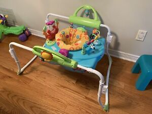 Fisher Price First Steps Jumperoo, OBO