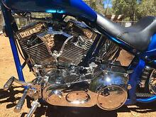 CUSTOM BUILT SOFTAIL Madeley Wanneroo Area Preview