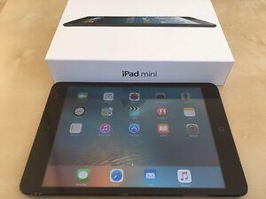 iPad Mini 1 - 16GB