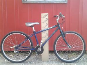 Giant Iguana 630 cromo steel all terrain bike, small, serviced Maribyrnong Maribyrnong Area Preview