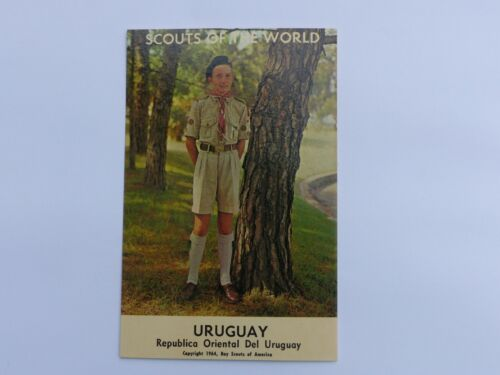URUGUAY Unused Vintage SCOUTS OF THE WORLD Boy Scout in Uniform 1964 Post Card