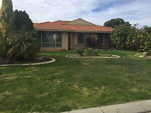 TIDY 4 X 2 IN QUIET CUL-DE-SAC - 5 PORTSEA PLACE Cooloongup Rockingham Area Preview