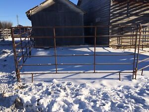 10 ft Corral Panels