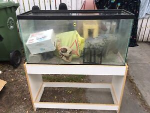Fish Stand w/ stand