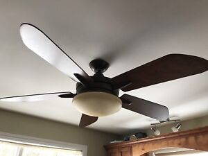Ceiling fan light fixture