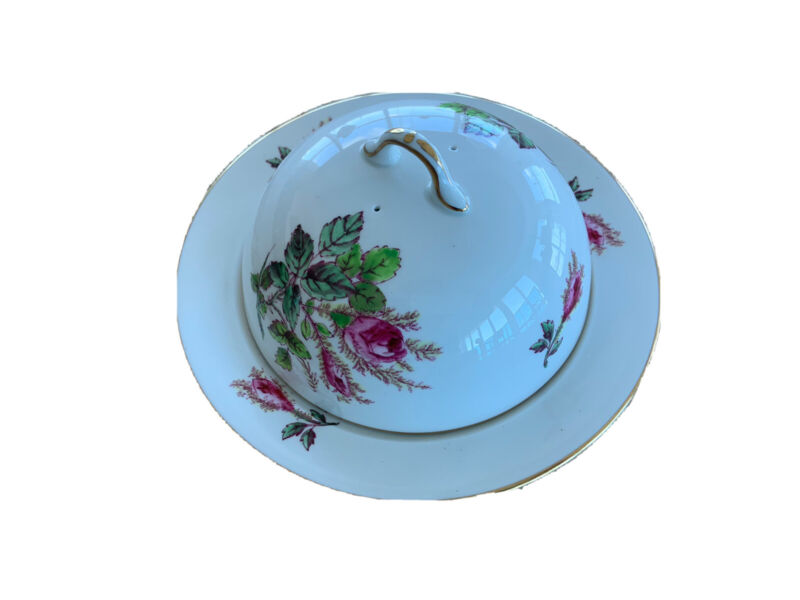 ROYAL CHELSEA MOSS ROSE FINE BONE CHINA Terrine Butter Dish ? ENGLAND