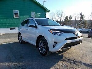 2017 Toyota RAV4 RARE PLATINUM PACKAGE! - TWO TONE LEATHER INTER