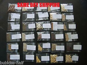 Emergency Food Vegetable Survival Garden Seed Heirloom Non GMO Lot Organic 30b