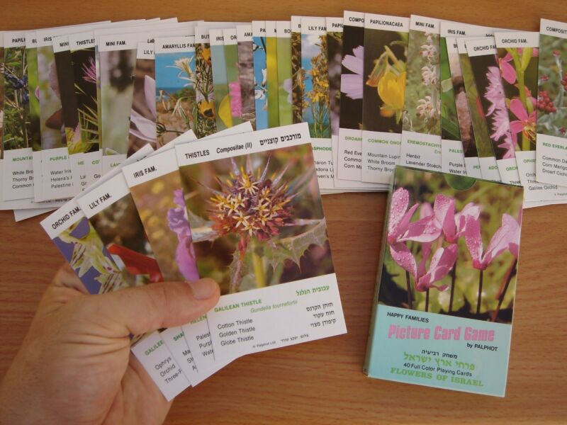 Flowers of Israel picture card game by Palphot