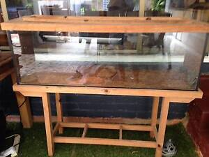 Reptile glass enclosure with wooden stand Stratford Cairns City Preview