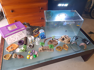 Complete Hermit Crab Setup Ready To Go! Wynnum Brisbane South East Preview
