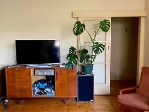 Cheap Room for Rent Thornbury Northcote Sharehouse