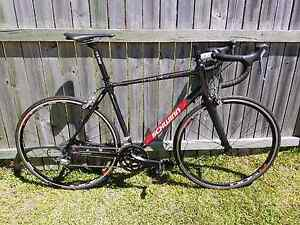 Carbon Road Bike (54cm) Negotiable! Brisbane City Brisbane North West Preview