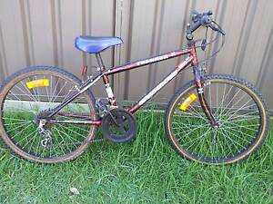 Adult Bike Merewether Heights Newcastle Area Preview
