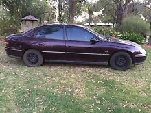 1998 vt commodore Bindoon Chittering Area Preview