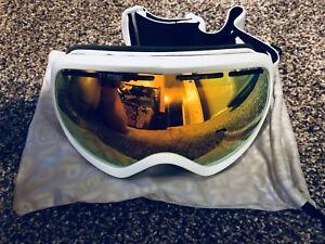 Von zipper goggles $10
