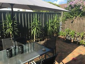 Half of a House to Rent in Hamilton!! Hamilton Newcastle Area Preview