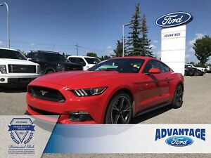 2016 Ford Mustang GT Leather Bucket Seats - Cruise Control