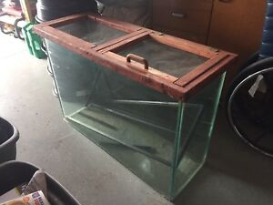 Free Fish Tank with custom lid for critters