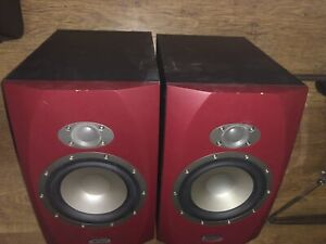 Tannoy  Reveal 6P studio reference monitors.