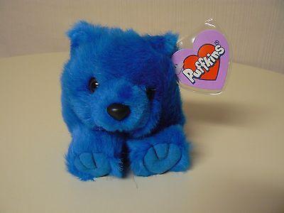 Puffkins Plush SKYLAR Blue Bear #6671 SWIBCO Birthdate 5-24-98 NWT