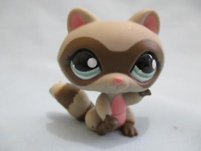 Littlest Pet Shop Raccoon 1651 Gray Brown Masked Pink Ears Authentic