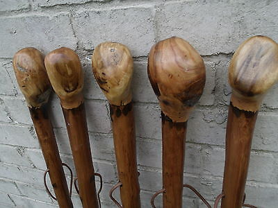 "Chestnut Walking Stick Rare Knob Hiking Farmer Dog Walker Thick Walking Cane 50"""
