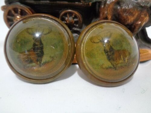 Old Horse Bridle Rosettes Buck Deer Antlers Hunting Glass Dome and Brass