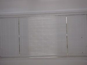 White Basswood Venetian Blinds East Maitland Maitland Area Preview