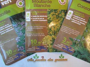 Graines engrais vert consoude phacelie moutarde blanche sarrasin trefle ecolo ebay - Graine de consoude ...