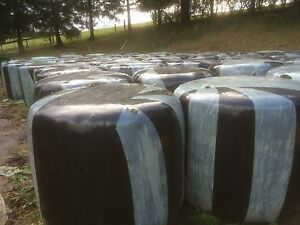 Silage feed for cows steers like round bales of hay Baw Baw Area Preview