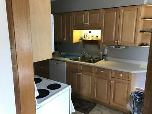 Kitchen cabinets - countertop and Appliances