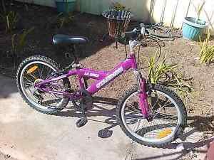 6 speed standish mountain bikes only ridden twice Osborne Port Adelaide Area Preview