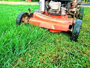NW Calgary Affordable & Professional Lawn Care -Mow, Aerate, +