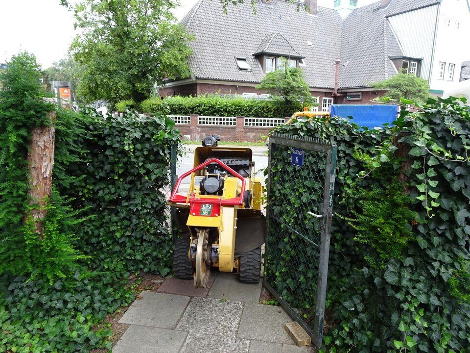 Stubbenfräsen, Baumwurzeln entfernen, stubenfräsen, Baumstumpf in Hamburg