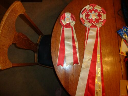 Vintage Morris the Cat Award 9 Lives Best Large Ribbon Award Second Place