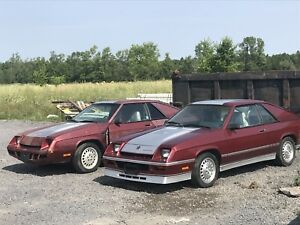 2 dodge Shelby chargers ( Turbo)