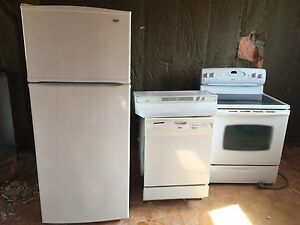 Fridge, dishwasher, stove and range hood